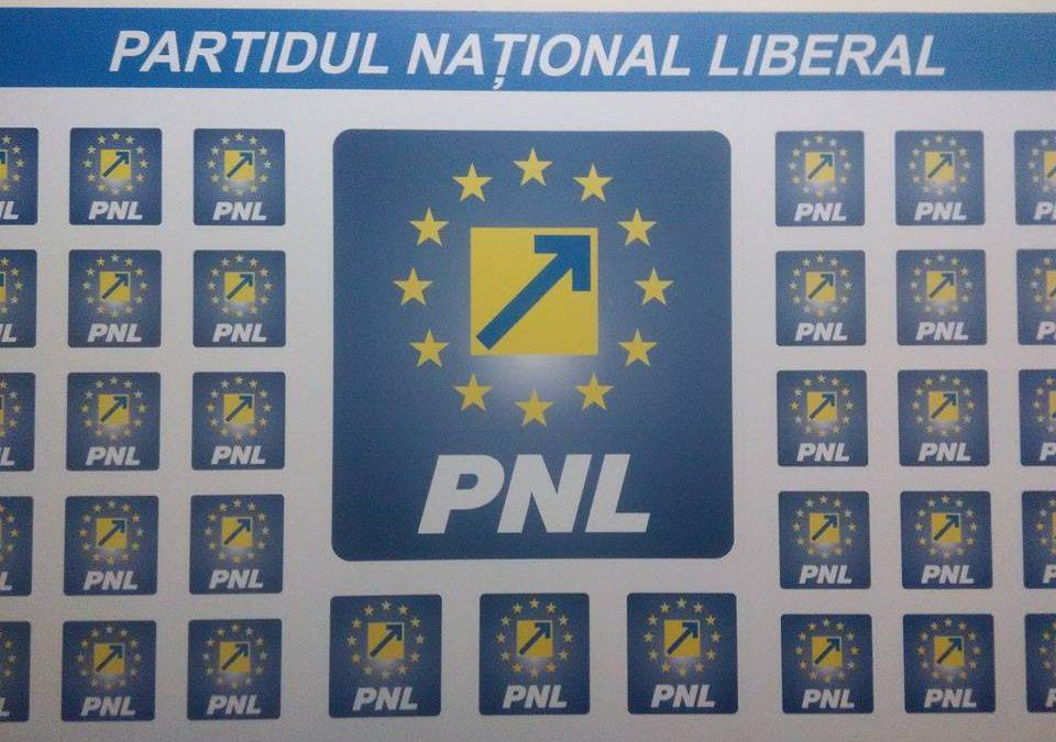 Un partid din Republica Moldova, acuzat că folosește numele și sigla PNL România fără consimțământ