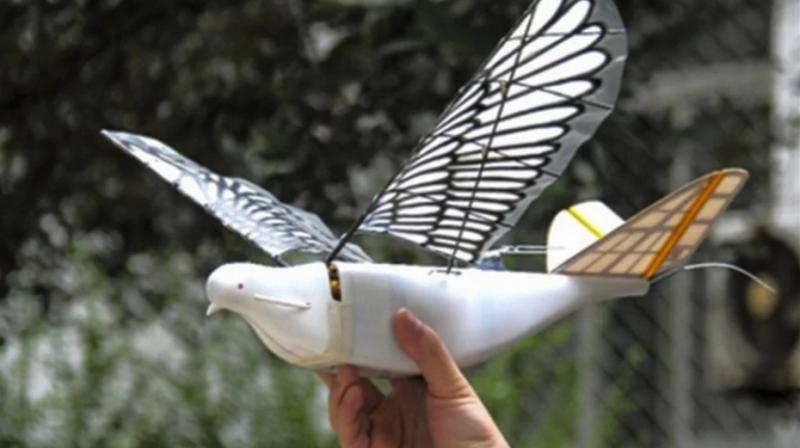 China a ajuns să-și urmărească cetățenii cu drone-porumbei