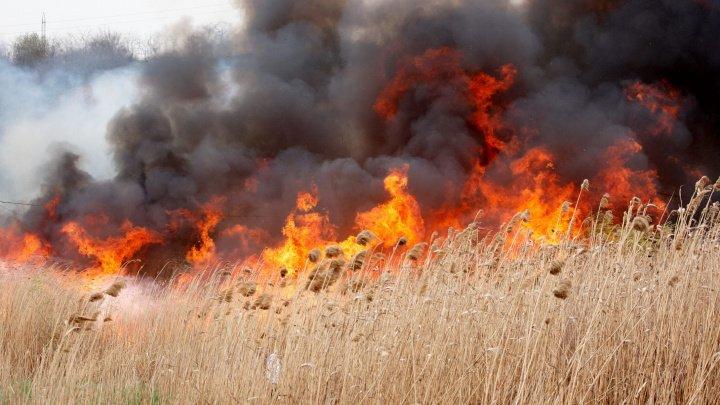 Republica Moldova, sub Cod galben de incendii