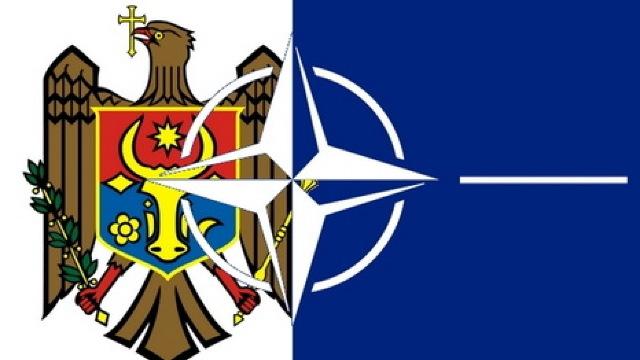Cooperarea Republicii Moldova cu NATO, discutată la Mons