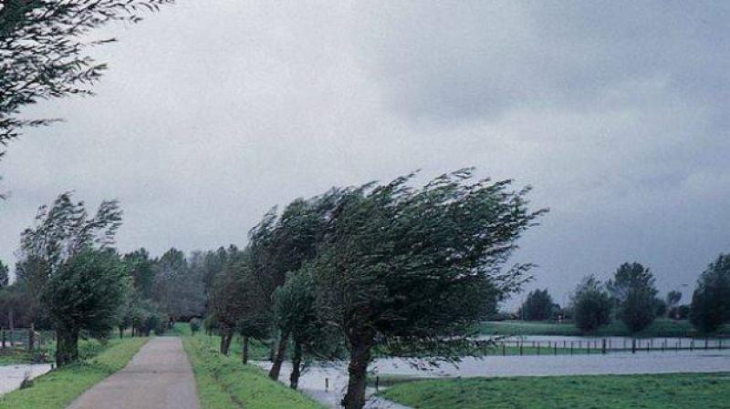 (METEO) Cod galben de vânt, emis de meteorologi