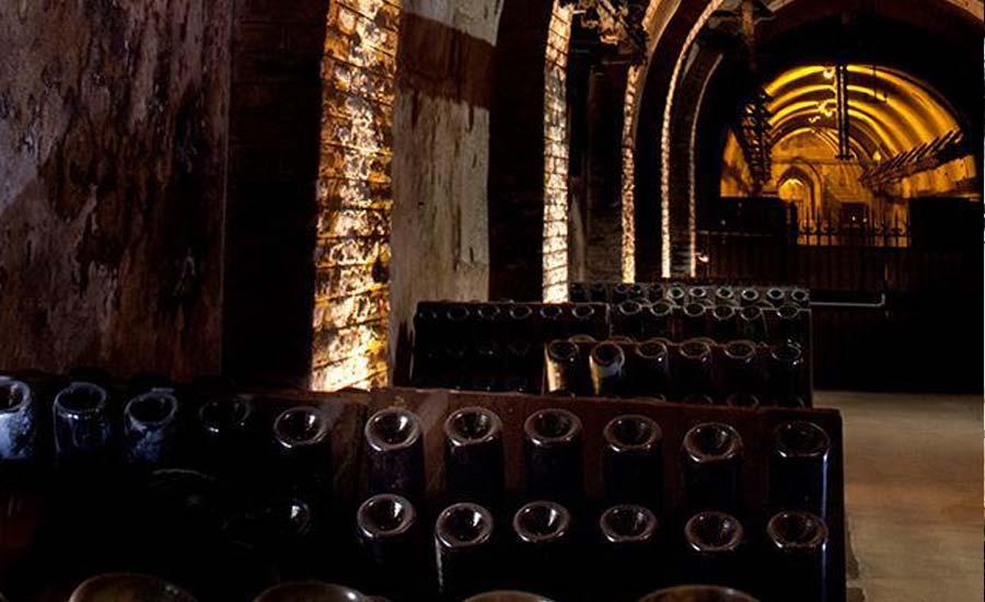 De ce a ajuns încălzirea globală să-i bucure pe viticultorii englezi