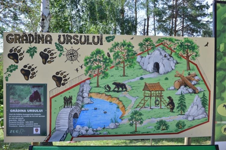 Urșii bruni de la Grădina Zoologică vor sta, din octombrie, într-o nouă volieră